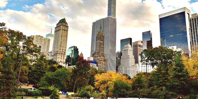 Les espaces verts : indispensables autour d'un bien immobilier
