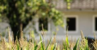 Faut-il vendre avant d'acheter un nouveau bien immobilier ou acheter avant de vendre ?