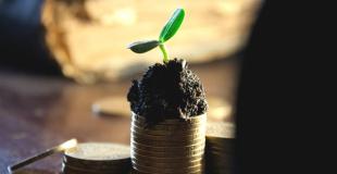 Quels avantages fiscaux attendre d'une SCI ?